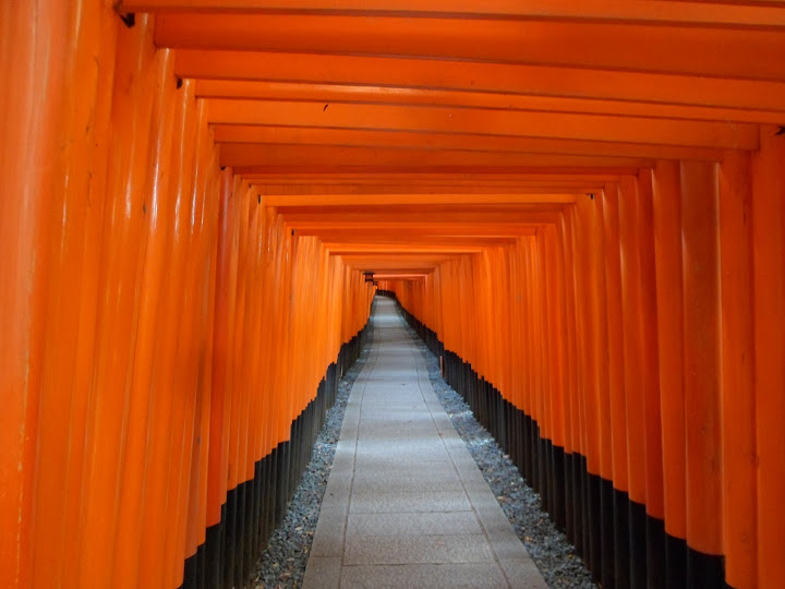 Kyoto Fushimi Inari Torii