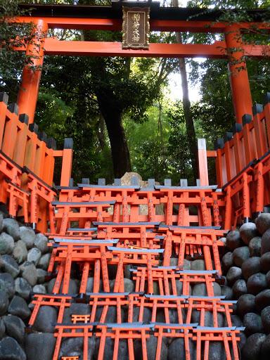 Fushimi Inari Toriis Kyoto